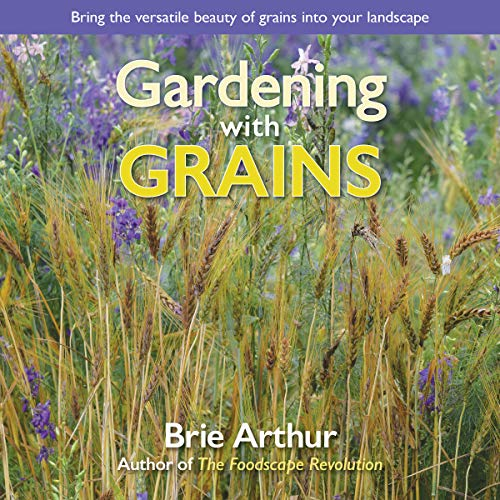 Gardening with Grains: Bring the Versatile Beauty of Grains to Your Edible Landscape