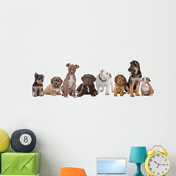Wallmonkeys FOT 24945146 48 WM263659 Large Group Of Puppies Peel And Stick Wall Decals 48 In W X 17 In H Extra