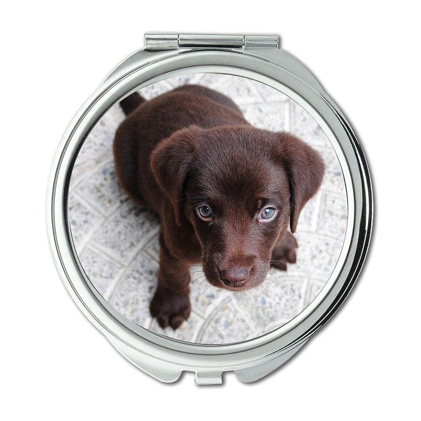偽造エゴマニアひどくミラー、メイクアップミラー、子犬ラブラドール純粋なレトリーバー犬のペットブラウン、ポケットミラー、携帯用ミラー