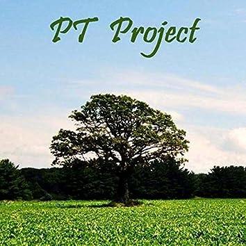 PT Project