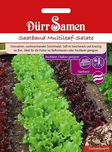 Dürr Samen 4400 Multileaf-Salate für Balkon Saatband (Salatsamen)
