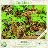 The Morels - 1,000 Piece MI Puzzles Jigsaw Puzzle