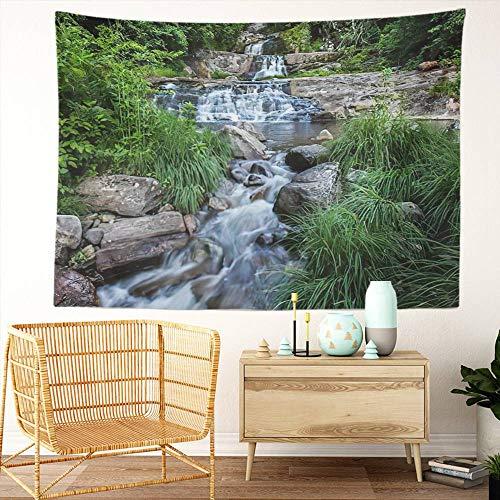 Y·JIANG Tapiz de paisaje de Estados Unidos, cascada de Kent CT en tiempo de verano, tapiz decorativo grande, manta para colgar en la pared para sala de estar, dormitorio, 152,4 x 127 cm