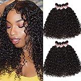 Water Wave Bundles 10A Brazilian Curly Virgin Hair Bundles Wet and Wavy Human Hair Bundles Ocean Wave Hair Weave Bundles Water Wave 4 Bundles Double Machine Weft Natural Black Color (18 20 22 24)