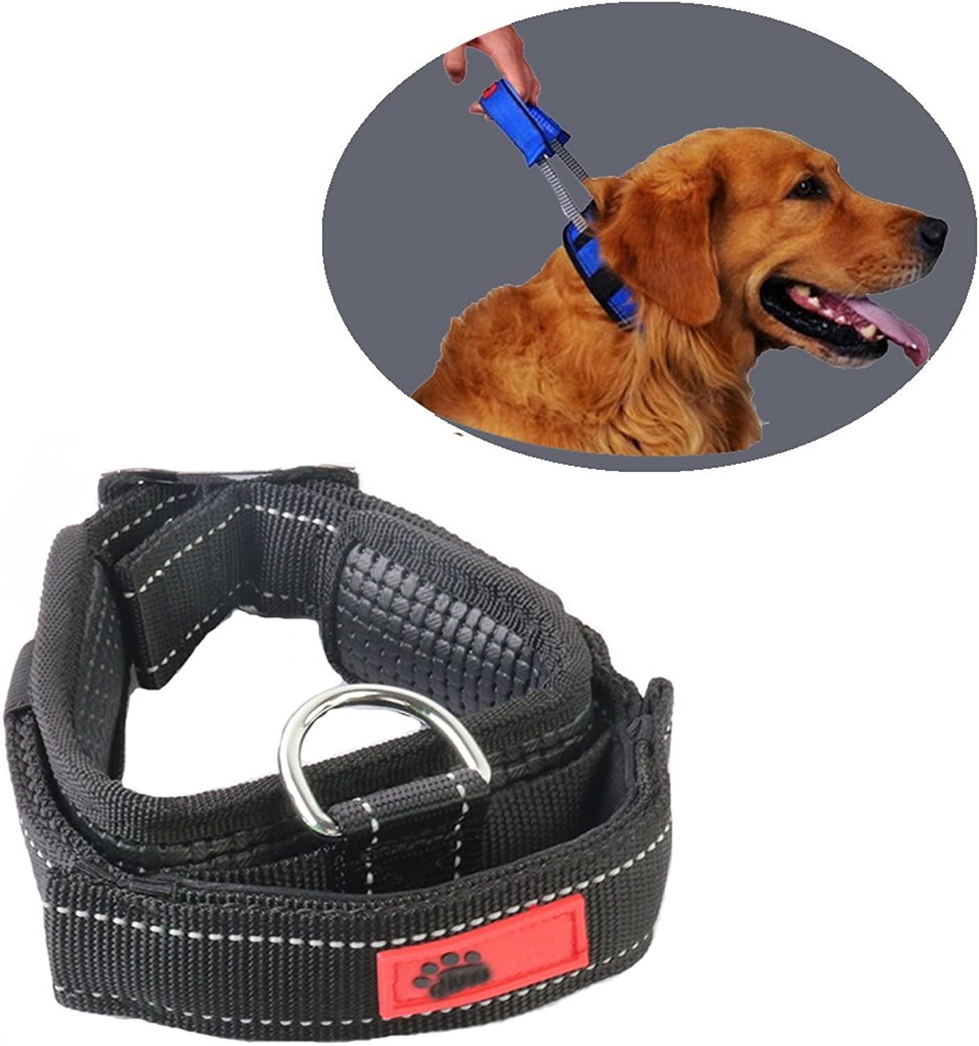 Comfort Padded Dog Collar by Schnappy,Nylon Webbing Pet Sports Dog Tag Collar with Convenient Retractable Leash for Walking (M, Black)