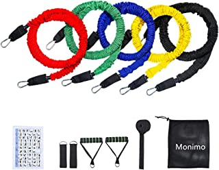 Resistance Bands Set, 11 Pieces Exercise Elastic Bands, Include Door Anchor, Ankle Straps, Foam Handles, Carrying Mesh Bag, Heavy Duty Resistance Bands with Protective Nylon Sleeves for Fitness