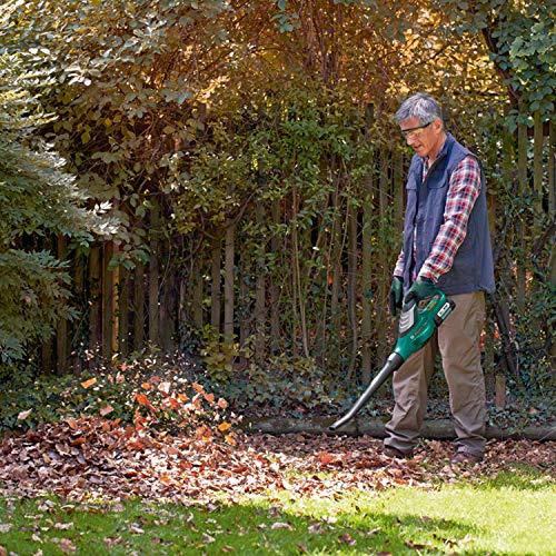 Bosch 06008A0471 ALB 36 LI Cordless Leaf Blower with 36 V 2.0 Ah...