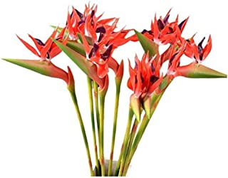 Dect Bird of Paradise Spray Natural Artificial Fack Flowers for Home Party Decorations Pack of 6