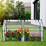 "Tooca 71"" x35"" x35"" portable greenhouse for indoor outdoor gardens/patios/backyards, suitable young plants (not included garden bed) 13 【perfect plant protection】clear pvc cover can stop plant seeds or young plants from frost, and keep internal moisture. It's ideal for maintaining seeds' breeding and plants' growing, helping extend the growing season for all year around. 【2 roll-up zippered doors】the mini greenhouse has two doors, which makes it easy and convenient for watering and ventilation. 【steady & reliable】iron frame with spray paint rust prevention treatment is sturdy and durable."