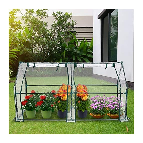 "Tooca 71"" x35"" x35"" portable greenhouse for indoor outdoor gardens/patios/backyards, suitable young plants (not included garden bed) 6 【perfect plant protection】clear pvc cover can stop plant seeds or young plants from frost, and keep internal moisture. It's ideal for maintaining seeds' breeding and plants' growing, helping extend the growing season for all year around. 【2 roll-up zippered doors】the mini greenhouse has two doors, which makes it easy and convenient for watering and ventilation. 【steady & reliable】iron frame with spray paint rust prevention treatment is sturdy and durable."