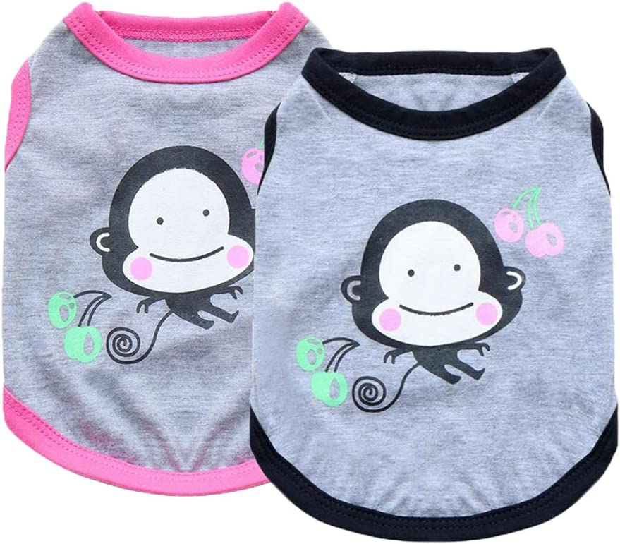 DERUILA New products world's highest quality popular Dog Clothes for Girls Small Dogs: A surprise price is realized Tshirts