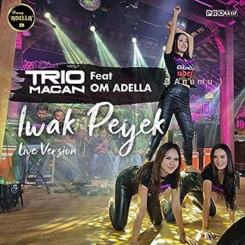 Iwak Peyek (Live Version)