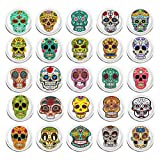 100 Pieces Creative Fashion Steel Thumb Tacks Push Pins Decorative Different Patterns for Photos Wall, Maps, Bulletin Board or Corkboards (Skull)