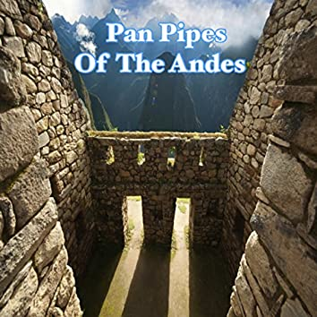 Pan Pipes From The Andes
