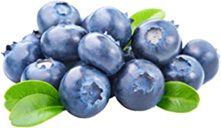 Hardyblue Blueberry (Heirloom) 300+ Seeds 646263362754 + 2 Free Plant Markers - Great for Pancakes