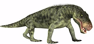Posterazzi Inostrancevia is a carnivorous reptile that lived during the Permian age of Russia Poster Print (20 x 10)