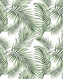 Tropical Palm Wallpaper Rainforest Leaves Wall Paper Jungle Wallpaper Self Adhesive Wallpaper Peel...