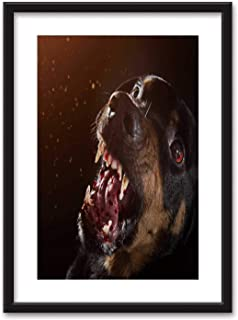 Actorstion Ferocious Rottweiler Barking mad on Black Background Framed Wall Art,053250 Black Picture Frames White Matting,23''x31''