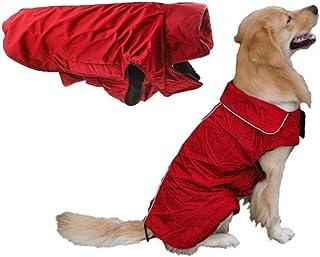 achat manteau chien pas cher