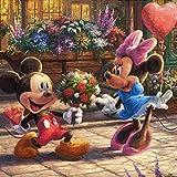 5D DIY Diamante Pintura Punto de cruz Disney Diamante bordado Mickey Minnie mouse Regalo para el hogar 30 * 40 cm