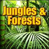 Thailand, Jungle - Thailand: Daytime Jungle Ambience: Heavy Insect Bed, Distant Birds, World Ambiences - Thailand, Forests, Jungles & Swamps, Birds, Insects