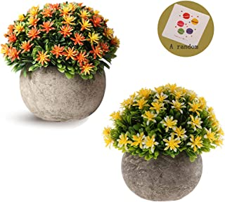 SRK Plastic Mini Artificial Plants Fake Green Colorful Realistic Grass Flower Shrubs with Gray Pot for Home Office Coffee House Decorations Indoor Multicolored (Yellow and SunsetGlow babysbreath)