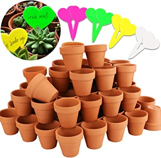 mini clay plant pots