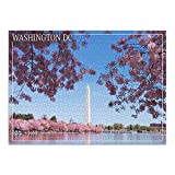 Washington Monument and Cherry Blossoms - Washington DC (Premium 1000 Piece Jigsaw Puzzle for Adults, 19x27, Made in USA!)