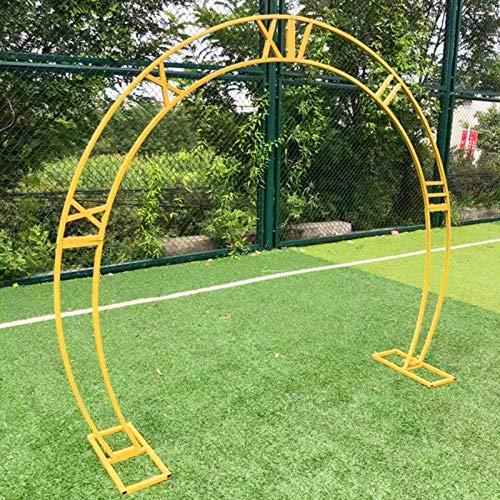 Arco Jardin para Bodas en Forma de Arco, 240 Cm X 200 Cm, Cenador de Jardín para Plantas Trepadoras (Dorado)