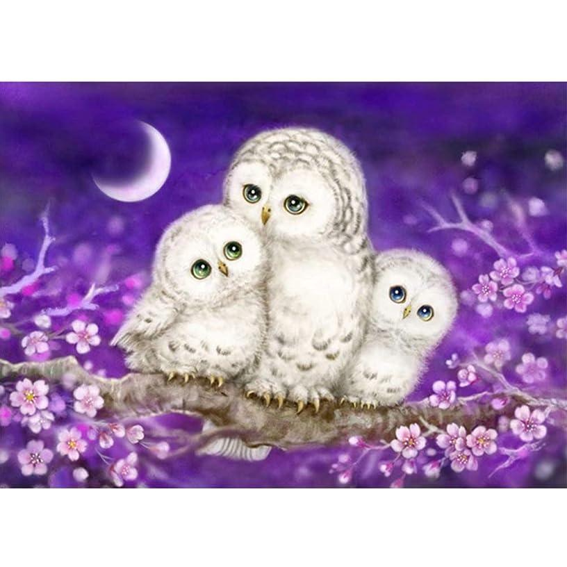 DIY 5D Diamond Painting Kit, Avton Full Drill Animal Cute Owls Rhinestone Embroidery Cross Stitch Supply Arts Crafts Canvas Wall Decor (A)