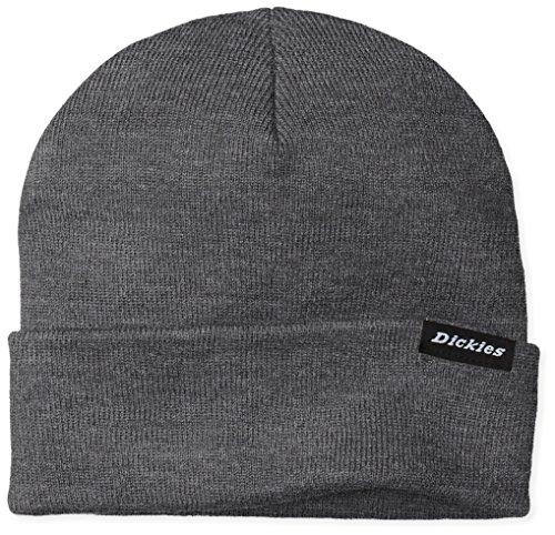 Dickies Herren Ohrenschützer Streetwear Cap Alaska grau (Drk Grey Mel) One Size