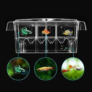 Petzilla Aquarium Fish Breeder Box for Baby Fish Hatchery