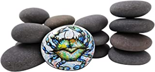 15 Painting Rocks by BasaltCanvas - Size 2 - Kindness Rocks for Painting - Very Smooth Surface - Easy to Paint - 15 Stones Ranging from 3.0 to 4.5 inches
