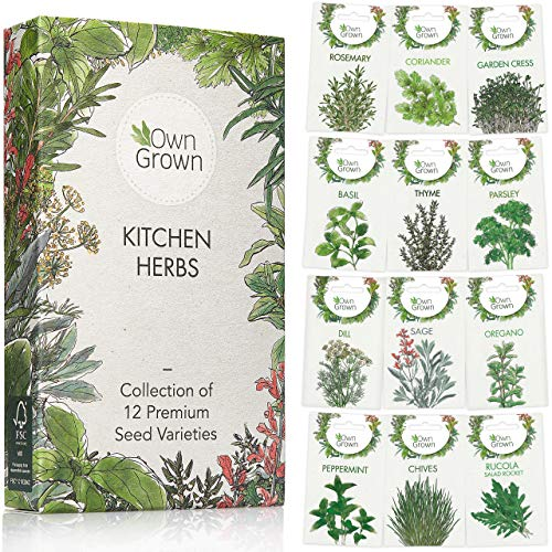 Kitchen Herb Seed Set: 12 Varieties of Kitchen Herbs as Practical Herb Seed Mix, Spice Seeds and Herb Set for Kitchen, Garden and Balcony - Eco Friendly Gift Box of 12 Indoor Plants Seeds by OwnGrown
