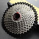 CYSKY Cassetta pignoni 10 velocità 11-42T Cassetta MTB 10 velocità adatta per Mountain Bike, bici da strada, MTB, BMX, SRAM, Shimano