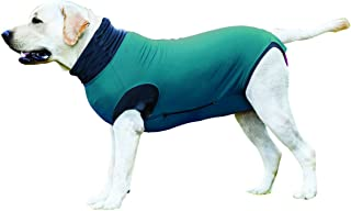 post surgery onesie for dogs