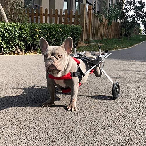 Cora Pet Wagen Hunderollstuhl Rollstuhl Dog Wheelchair für Hunde Katze Hase, Hinterbein/Hintere Füße, Rollwagen Gehhilfe Hundegehilfe Hunderollwagen, Haustier von 2~44 lb