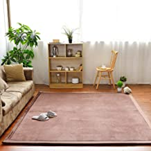Solid Rectangular Area Rugs Soft Living Room Children Bedroom Rug Coral Fleece Anti-Slip Carpets Home Decor Modern Indoor Outdoor Runners Nursery Rugs 3.2' X 6.5'
