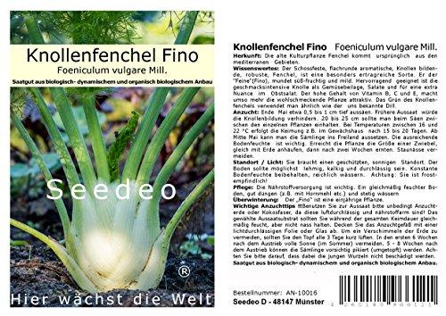 Seedeo® Knollenfenchel Fino (Foeniculum vulgare Mill.) 80 Samen BIO