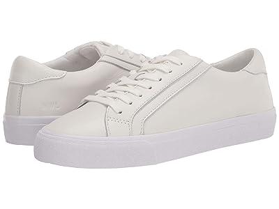 Madewell Sidewalk Low Top Sneakers (Pale Parchment) Women