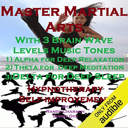 Master Martial Arts with Three Brainwave Music Recordings audiobook cover art