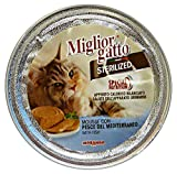 Milgior gatto - Mejor gato esterilizado