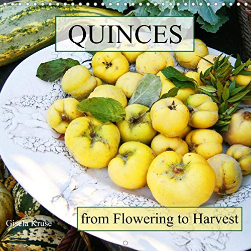 Quinces From Flowering to Harvest (Wall Calendar 2021 300 × 300 mm Square)