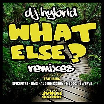 What Else Remixes