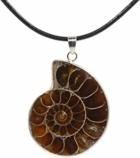 Justinstones Natural Ammonite Fossil Jewelry Silver Tone Wrapped Pendant Necklace