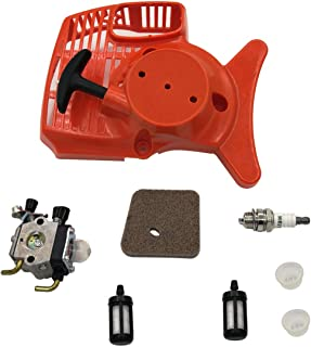 Amazon.es: cebador - Cortacéspedes y herramientas eléctricas para ...