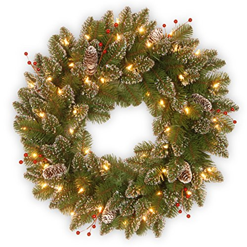 National Tree 24 Inch Glittery Mountain Spruce Wreath with White Tipped Cones, Red Berries and 50 Battery Operated Warm White LED Lights with Timer (GLM1-300-24W-B1)