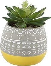 Flora Bunda Artificial Succulent in 2 Tone Mayan Ceramic Pot Yellow Mayan