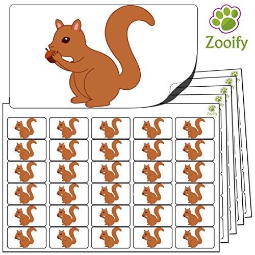 480 x Aufkleber - Eichhörnchen (38 x 21 mm). Hochwertige selbstklebende Etiketten mit Tiermotiv von Zooify.