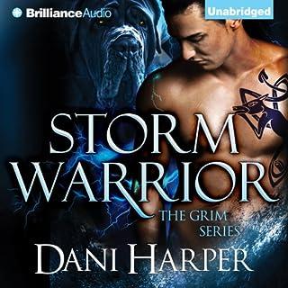 Storm Warrior cover art